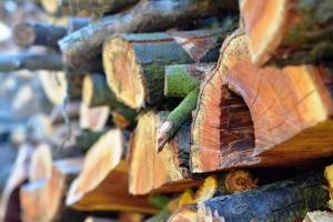 wood-804586_1280