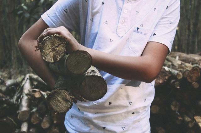 firewood-918930_640